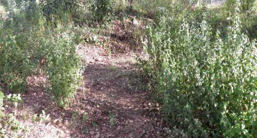 Terreno en venta en Aiguaviva Parc